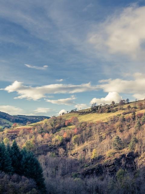 DSC_7325-Panorama